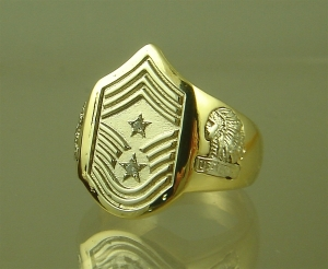 Picture of US Air force Command Chiefs Ring